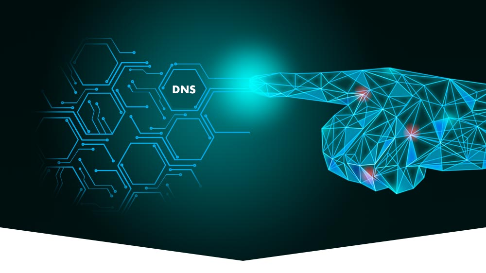 Migration to IP based telecare systems: DNS understanding