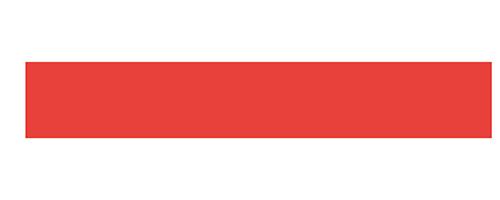 Everon logo